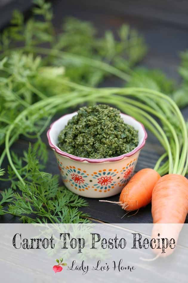 Carrot Top Pesto Recipe - Here is a way to use more of your harvest. Instead of tossing the carrot tops, make carrot top pesto with them. It's easy and very tasty. Here is how to make carrot top pesto. #LadyLee'sHome