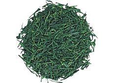 玉露・かぶせ茶|お茶の種類|お茶百科