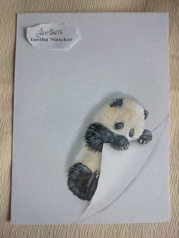 My animal drawings try to leap off the page