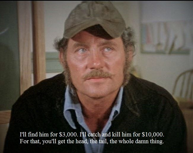 The life and career of robert shaw