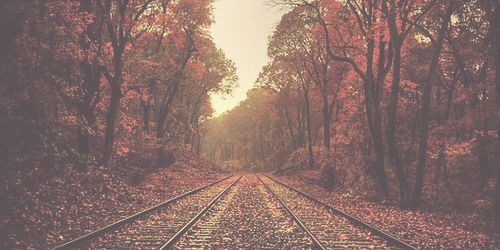 how cute is the autumn train track?
