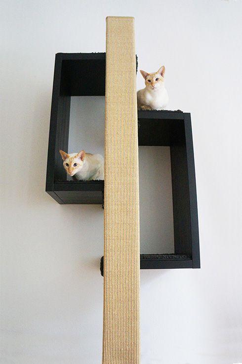 46 best kratzb ume images on pinterest cat furniture cat supplies and pet furniture. Black Bedroom Furniture Sets. Home Design Ideas