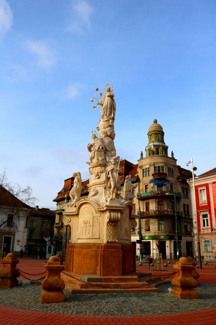 St. Mary and St. Nepomuk Monument, Timisoara. Credits: Monica Tanase