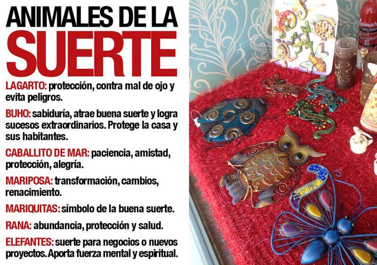 Gabinete Tarot Aura » simbología animales