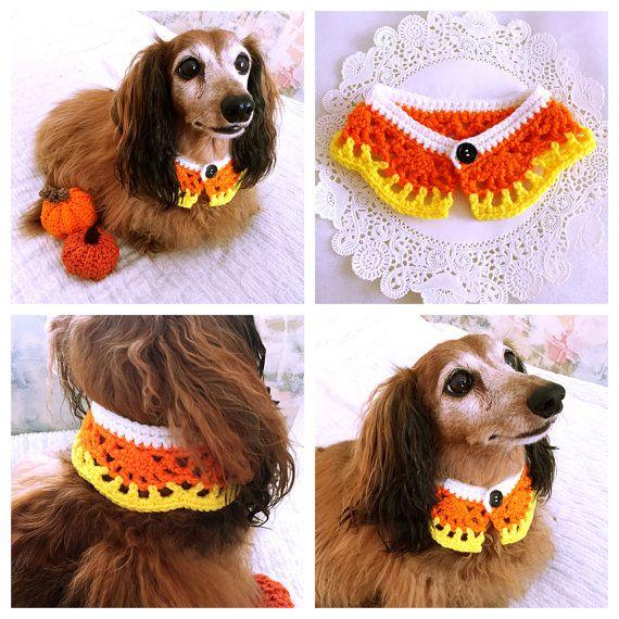 Crochet Dog Scarf, Dog Collar, Halloween Candy Corn Dog Bandana, Cat Scarf, Pet Accessory, Pet Clothing Apparel, Pet Scarf, Present for Dogs