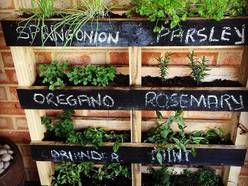 Meble z palet, ogród, taras/ stoliki, półki itp