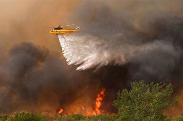 Parts of the French Riviera were evacuated late Tuesday and into Wednesday as forest fires burned swathes of land and threatened thousands ...