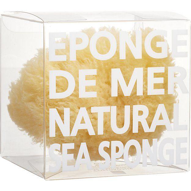 natural sea sponge | CB2
