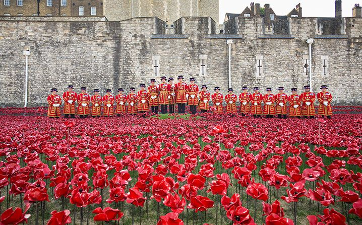 The Tower of London's 888,000 Poppies | National Review Online