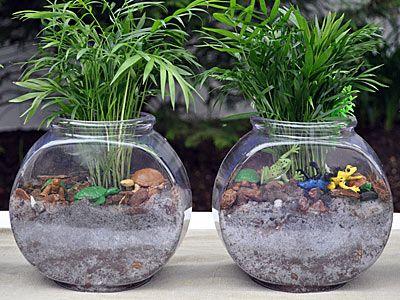 21 best atrium images on pinterest floral arrangements for Fish bowl with plant on top