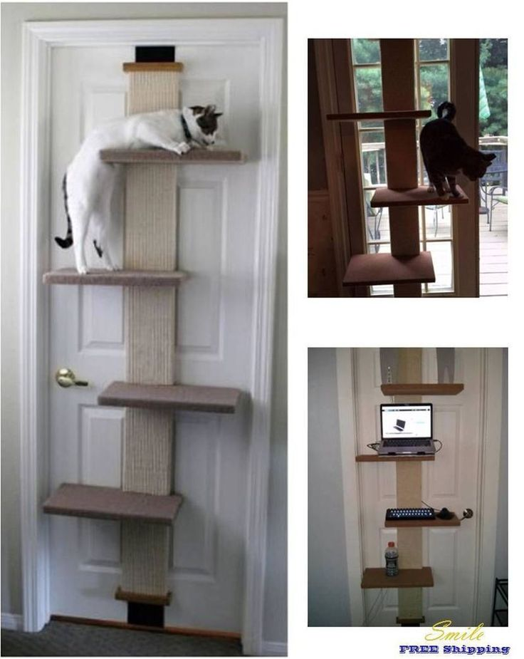 Sleep Scratching Wall Door Furniture Cat Condo Tree Shelf Bed Toy Climber Pet | Pet Supplies, Cat Supplies, Furniture & Scratchers | eBay!