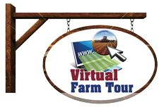 Virtual Farm Tours:  Take a peek inside the barns and fields to find out more about farming in Canada. You'll meet the farmers who put food on our tables 365 days each year; you'll see the animals that live on many of these farms and you'll learn about the work that goes into growing a wide variety of crops.