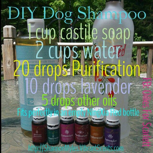 DIY homemade dog shampoo using Young Living Essential Oils