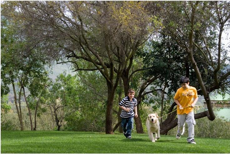 Los Altos de Olmué te está esperando con los mejores panoramas para ti y tu familia. Ven a conocer nuestros hermosos entornos. www.losaltosdeolmue.cl