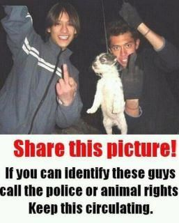 If anyone knows these deviants please report them.