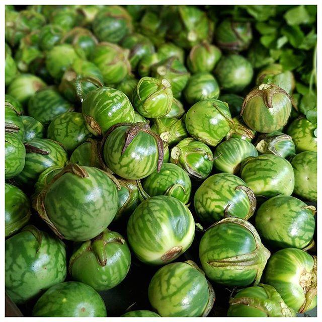Ces drôles de petits légumes verts ressemblant à des tomates green zebra s'appellent des Enguives (anguives ? ) ; cuisson à l'étouffée préconisée ;) Je ne sais pas si c'est bon mais leur look donne envie de goûter Vous connaissiez ?