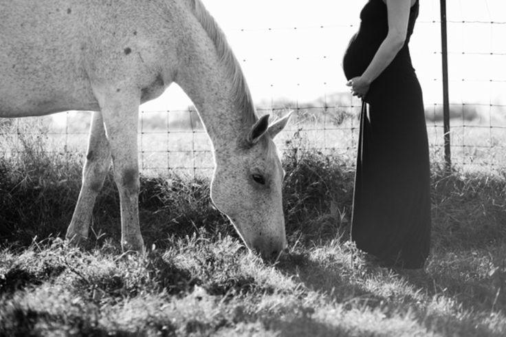 Horse Pasture Maternity Photos | The Little Umbrella
