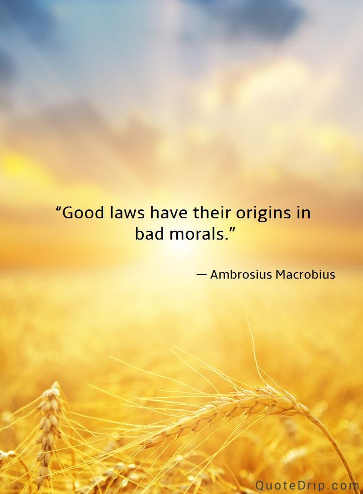 Good Laws Have Their Origins In Bad Morals Ambrosius Macrobius