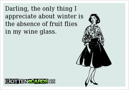 Darling, the only thing I appreciate about winter is the absence of fruit flies in my wine glass.