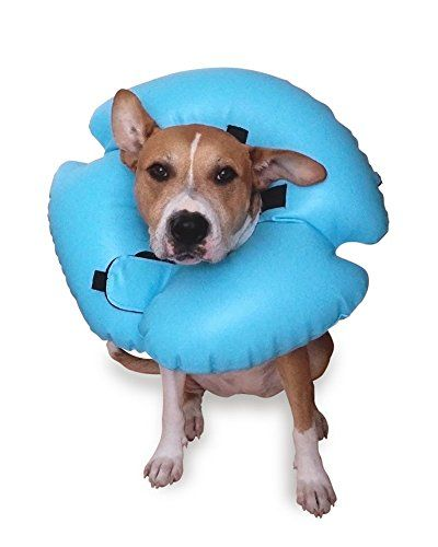 Remedy  Recovery Stay Rite Xtra Strong Inflatable Recovery Dog Collar Medium Blue ** You can get additional details at the image link.Note:It is affiliate link to Amazon.