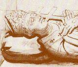 Robert Champart: gekozen tot abt van Jumièges in 1037. In 1042 gaat hij met Edward the Confessor mee naar Engeland. In 1044 wordt hij bisschop van Londen. In 1051 wordt Robert de eerste Normandische aartsbisschop van Canterbury. Door de roerige tijden vertrekt hij uit Engeland in 1052 en gaat via Normandië naar Rome. Hij keert niet meer terug naar Engeland en brengt zijn laatste jaren door in het klooster van Jumièges.
