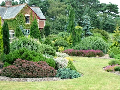 Foxhollow Garden.  Large ornamental grasses with shrubs and conifers.