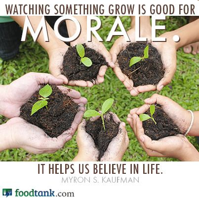 """Watching something grow is good for MORALE. It helps us believe in life."" -Myron S Kaufman"