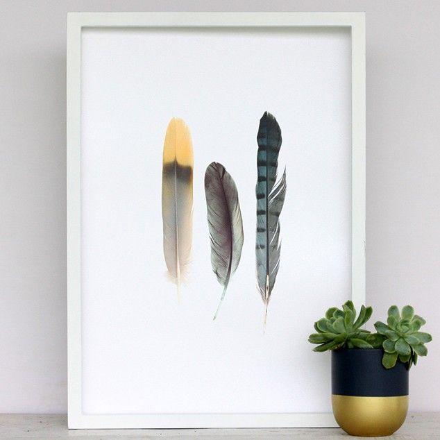 Metallic Feathers Art Print by Cloud 9 Creative - All Art Prints NZ Art Prints, Art Framing Design Prints, Posters & NZ Design Gifts | endemicworld