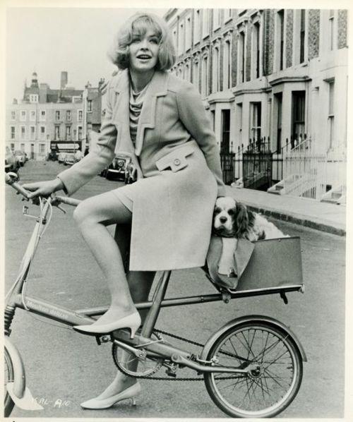 Susannah York & her King Charles in 1966 movie 'Kaleidoscope' via cool blog http://ridesabike.tumblr.com/page/18
