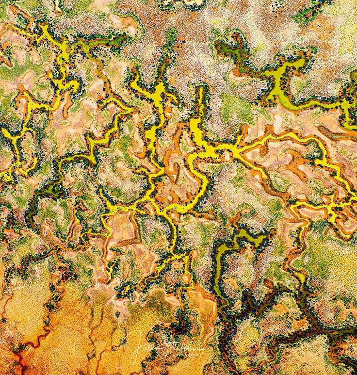 The flooded desert from about 4000ft I was amazed at the patterns from high above. - - - - #naturephoto #main_vision #artofvisuals #watchthisinstagood #landscape_captures #awesome_earthpix #natureaddict #rsa_rural #awesomeearth #nature_wizards #ourplanetdaily #naturediversity #instanaturelover #earth_deluxe #allnatureshots #focalmarked #australiagram #australialovesyou #ig_australia #loves_australia #seesouthaustralia #travelphotography #aerialyoga #simpsondesert