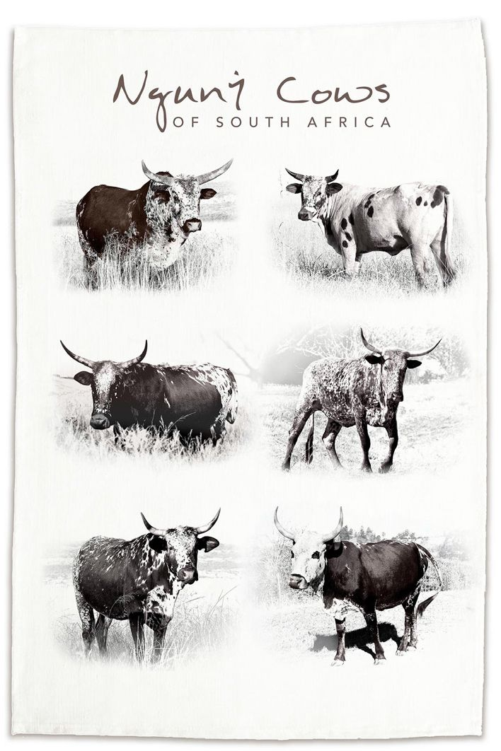 Classic Nguni TEA TOWELS   NEW Diningware Product   Now available online at NguniGalore.com   Shop online - Delivery to anywhere in South Africa is FREE!