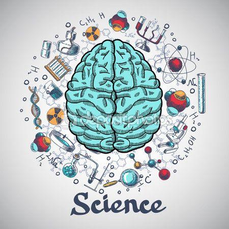 Concepto de ciencia cerebro bosquejo — Ilustración de stock #54335447