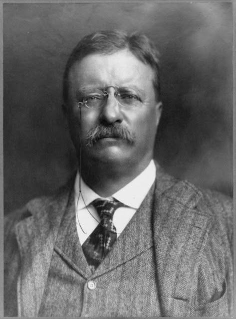 Theodore Roosevelt, was the 26th President of the United States. Check out the interesting facts we collected. Amaze your friends with these facts!