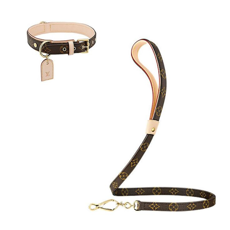 Louis Vuitton Baxter dog collar, $345 us.louisvuitton.com Louis Vuitton Baxter…