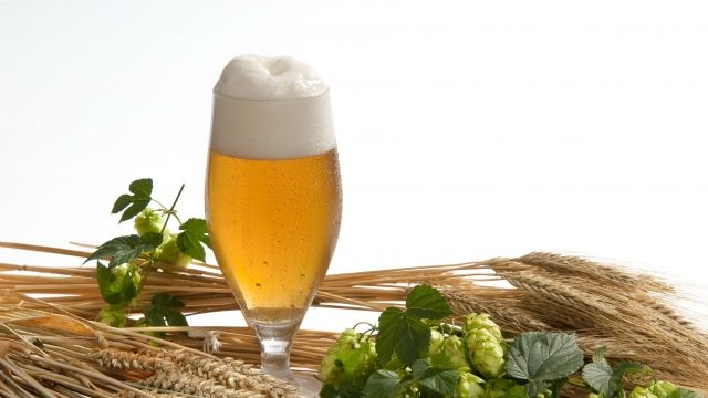 Cerveza de cebada de trigo, fresquita que rica!!!