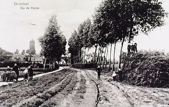 Algemeen overzicht weg naar Wintelre, thans genaamd Slingerbos - 1910-1920