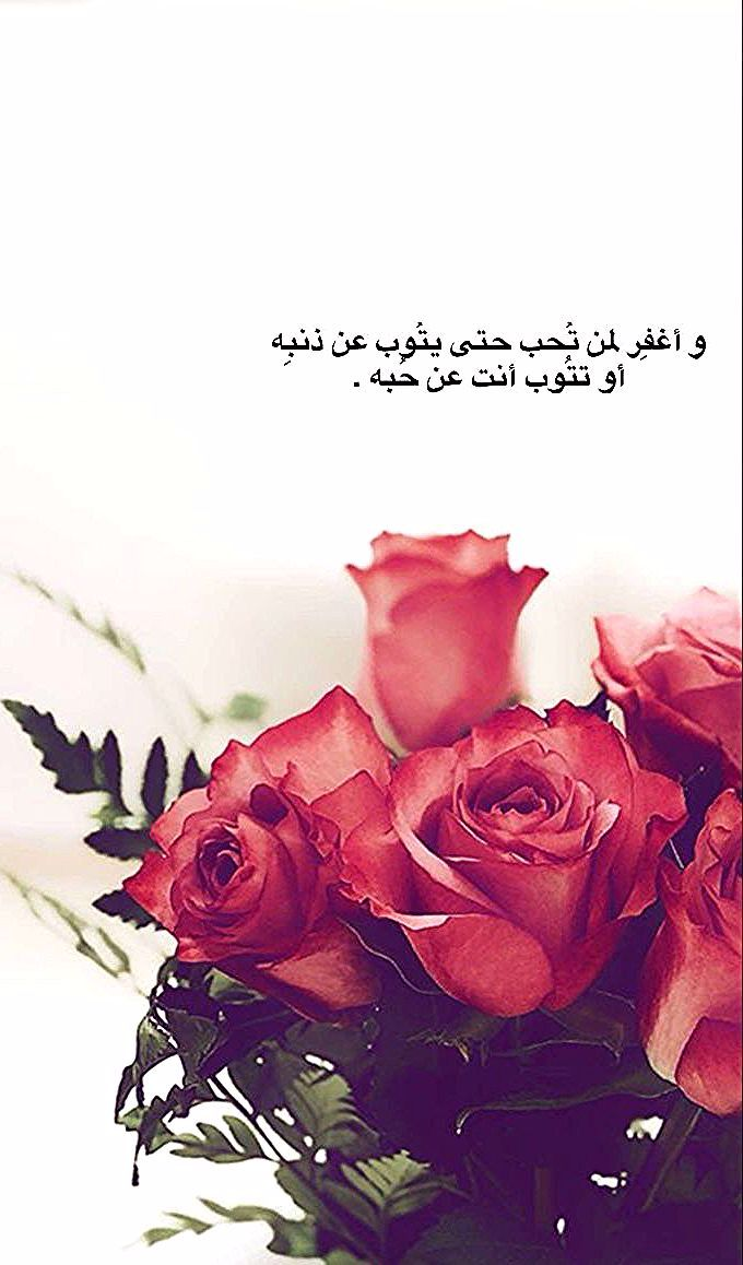 Pin By Mohammed Mahdi On وردة حمراء Arabic Quotes Rose Flower Pictures Friends Quotes