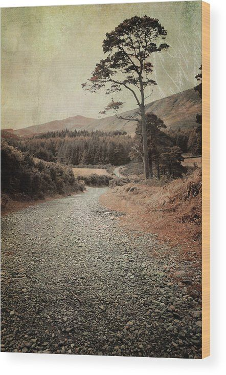 Autumn Journey In Wicklow Hills Wood Print by Jenny Rainbow.  All wood prints are professionally printed, packaged, and shipped within 3 - 4 business days and delivered ready-to-hang on your wall. Choose from multiple sizes and mounting options.