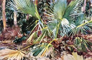 """Palm Trees, Floride"", aquarelle de Winslow Homer (1836-1910, United States)"