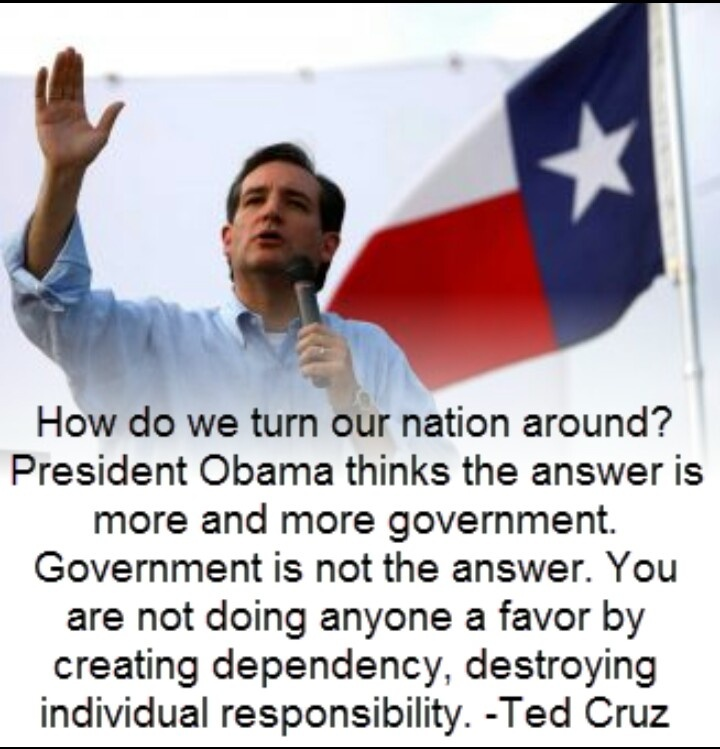 Ted Cruz: Champion of limited government, personal responsibility and the US Constitution.