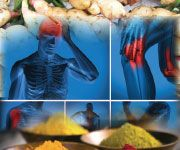 Bio-Enhanced TURMERIC Compounds Block Multiple Inflammatory Pathways