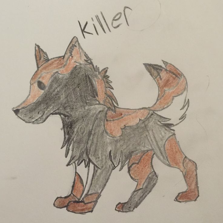 Killer is my dog in the comics he's a husky wolf mix breed you can't see the wolf in him though