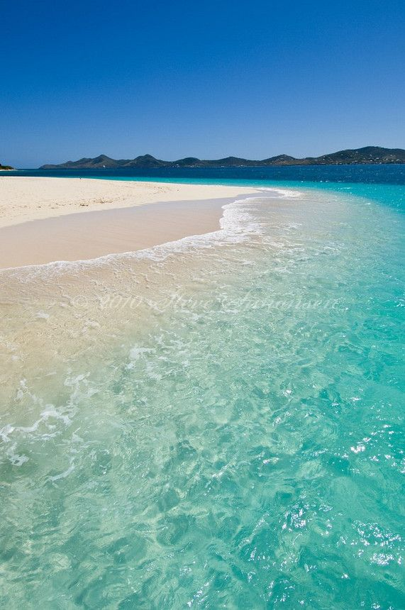 Buck Island Reef National Monument.  St Croix.US Virgin Islands