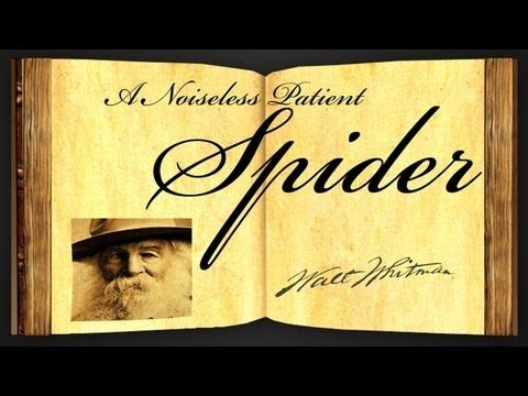 a literary analysis of a noiseless patient spider a poem by walt whitman A noiseless, patient spider by walt whitman mark'd how to explore the vacant surrounding, it launched forth filament, filament, filament out of its self.