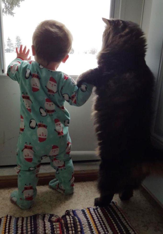 La petite Josilyn, âgée de 9 mois a bien de la chance, un ange gardien veille sur elle et ce n'est pas n'importe qui ...Une amitié…