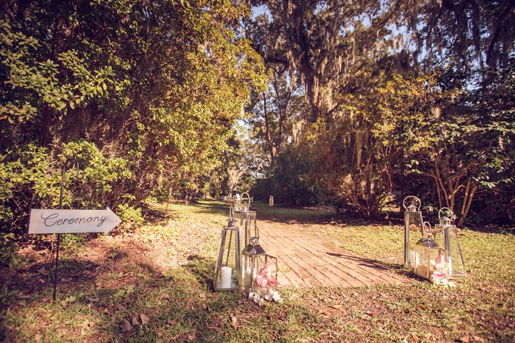 Mingle   Old Wide Awake Plantation   Richard Bell Photography