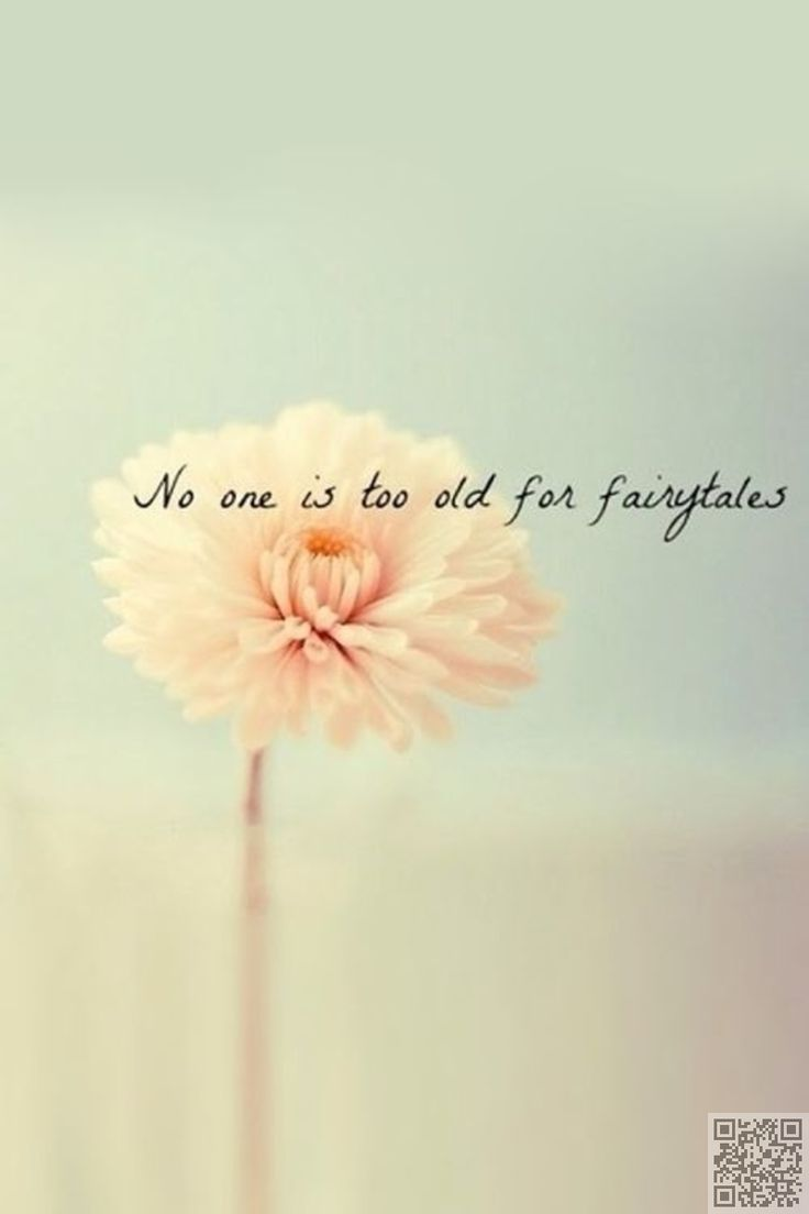 1000+ Cute Short Quotes On Pinterest