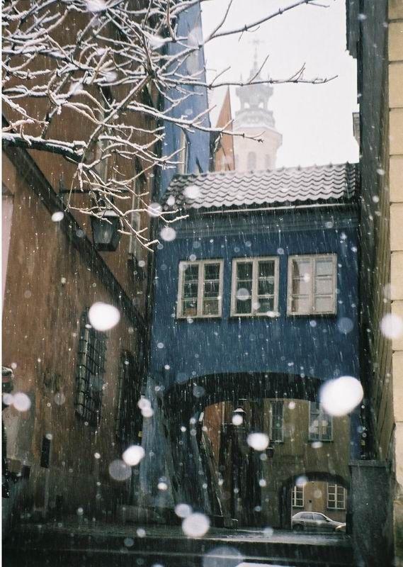 Blue Corner, White Nature - Warsaw, Poland Copyright: Joao Dessa