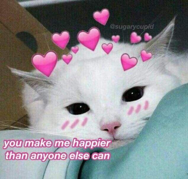 Pin By Kylie Underwood On A E S T H E T I C P A S T E L Cute Love Memes Wholesome Memes Cute Cat Memes