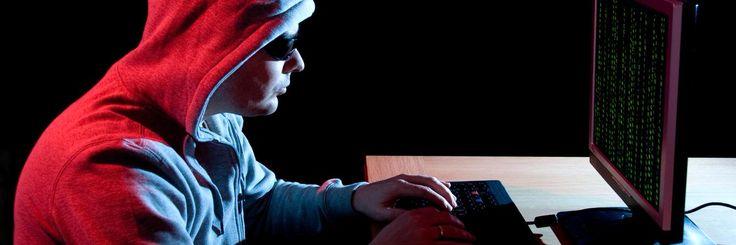 Hacker in a hoodie.